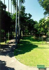 Jardim3